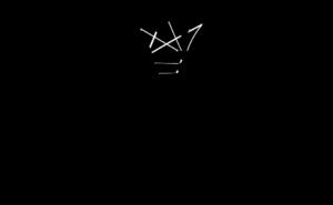 logo final sw 300x185